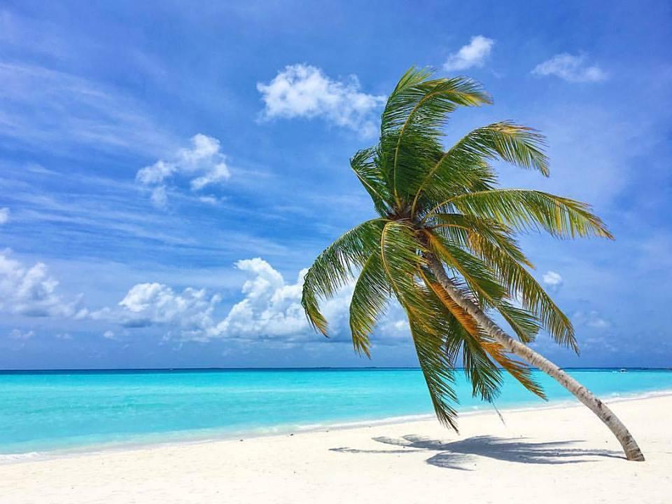 Maldives ARTravel.ch